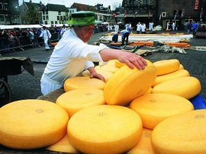Из-за дефицита молока российские потребители вынуждены довольствоваться сомнительным творогом с заменителями