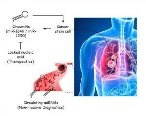 Новый способ диагностики и лечения рака лёгких