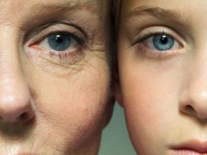Эпигенетика старения и перспективы омоложения