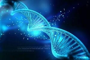 5 фактов об изменении кода человеческого эмбриона