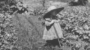 Почему мы не помним свое раннее детство?