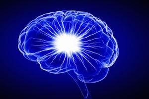 Мозг мальчиков и девочек по-разному реагирует на повреждения