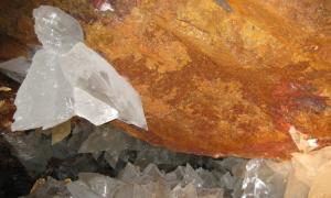 В пещерах в Мексике найдены формы жизни возрастом 50.000 лет