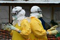 Вирусологи бьют тревогу — вирус Эбола может мутировать